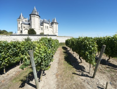 The best of Loire Valley wines